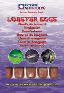 Ocean Nutrition Lobstereier Blister (20 cubes) 100g