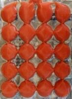 Rotes Meeresplankton (Calanus finmachicus) 250g