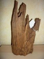 Mangrovenholz
