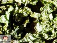 Grünalge Meersalat (Ulva) 10g